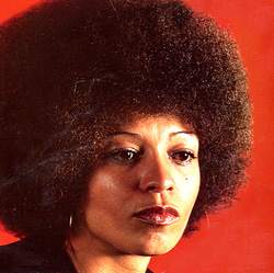 Angela Davis (voices.cla.umn.edu/.../ authors/DAVISangela.htm)