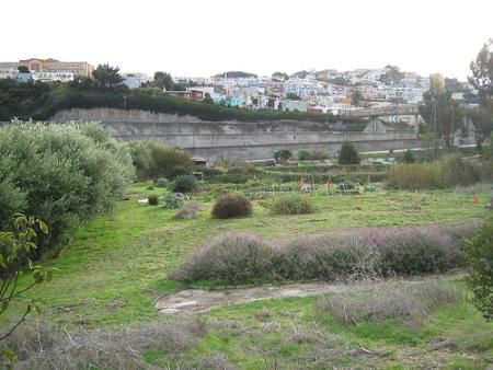 Picture of Antonio Roman-Alcala and Alemany Farm