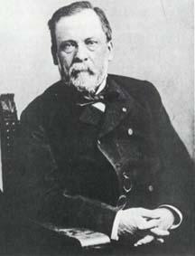 Picture of Louis Pasteur