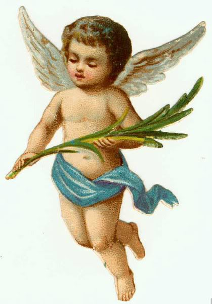 (http://fanniesinegal.nm.ru/baby-boy-angel-pictures.htm ())
