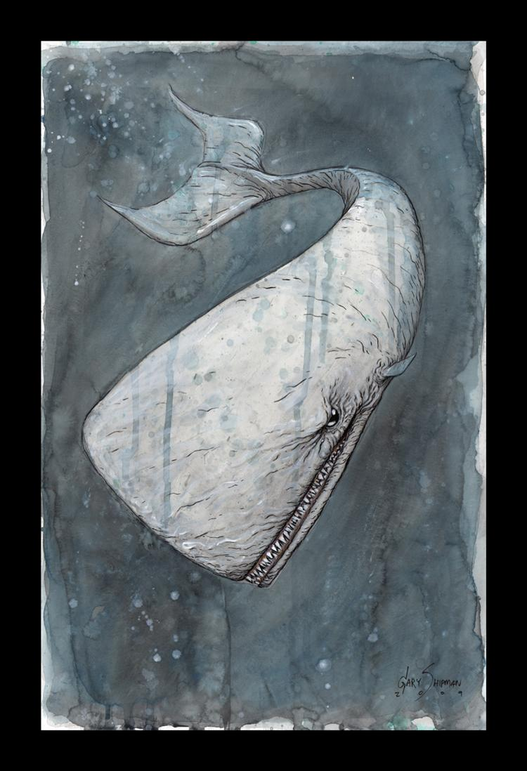 Picture of Monster Whale