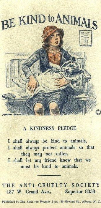 Picture of BE KIND to ANIMALS - a kindness pledge