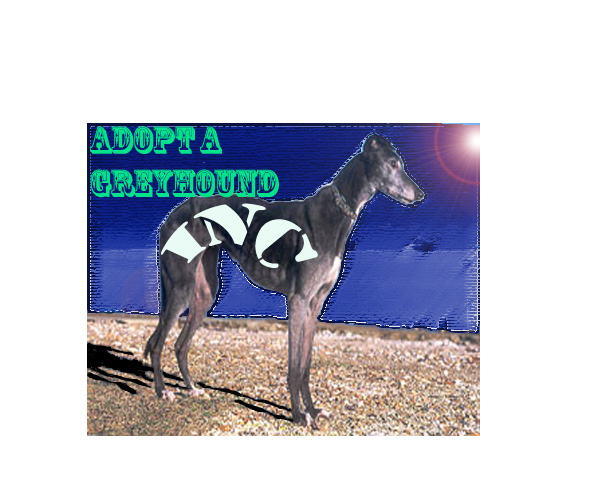 Picture of Adopt A Greyhound, Inc.