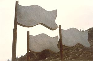 Picture of Concrete Flags from Concrete Creek