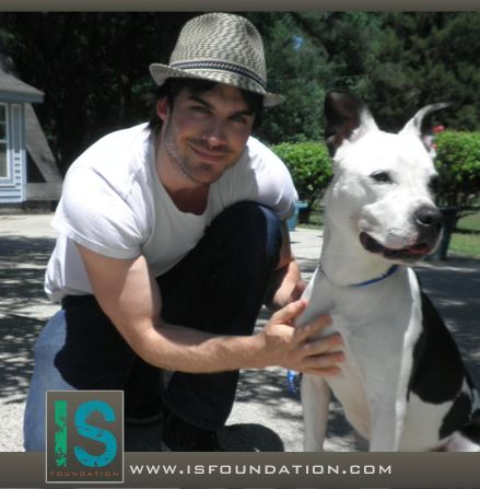 Picture of Ian Somerhalder