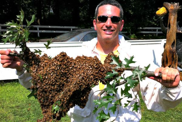 Picture of Andrew Cote roams the world to teach the sweet science of beekeeping