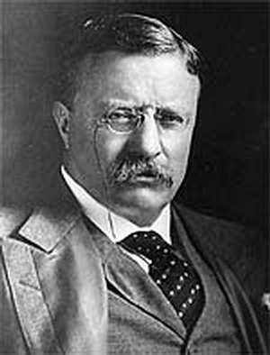 Picture of Theodore Roosevelt