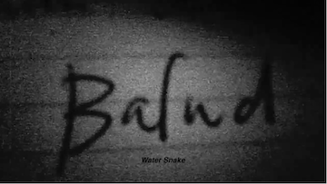 Picture of Balud