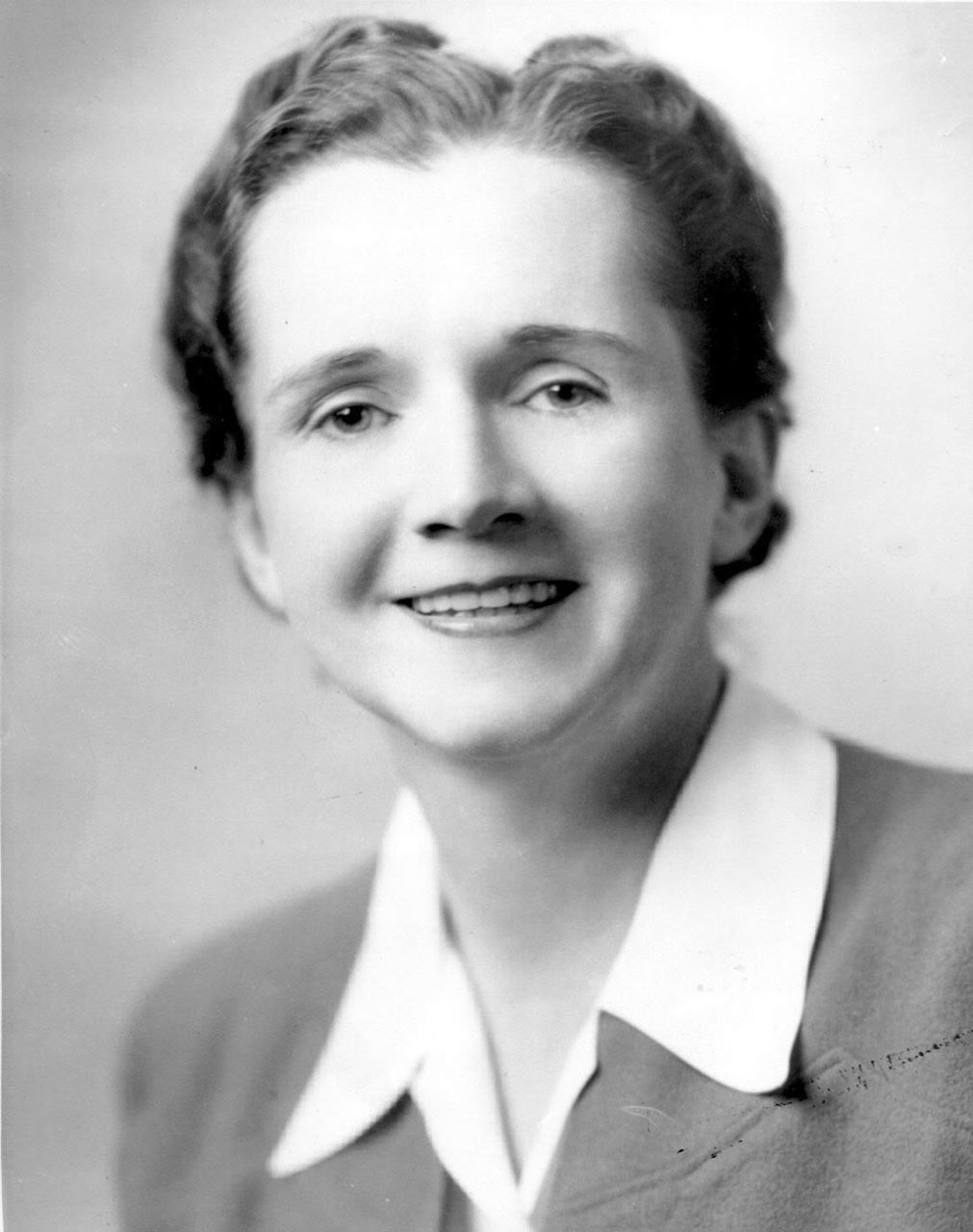 Picture of Earthkeeper Hero: Rachel Carson by Wendy Jewell