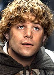 Picture of Literary Hero: Samwise Gamgee by Kaylie from Beavercreek