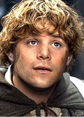 an introduction to the samwise gamgee A samwise frodo baggins/sam gamgee - freeform summary sam gamgee's days are full, but not full enough to keep the memories at bay  frodo baggins & sam gamgee.