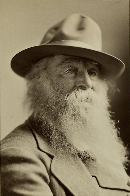 Picture of Poet Hero: Walt Whitman by Austin from Boca Raton