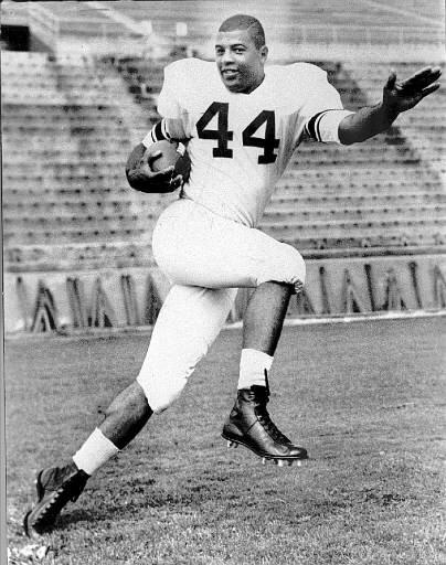 Picture of Sports Hero: Ernie Davis by Dani Wagner