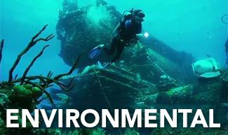 Picture for category Environmental