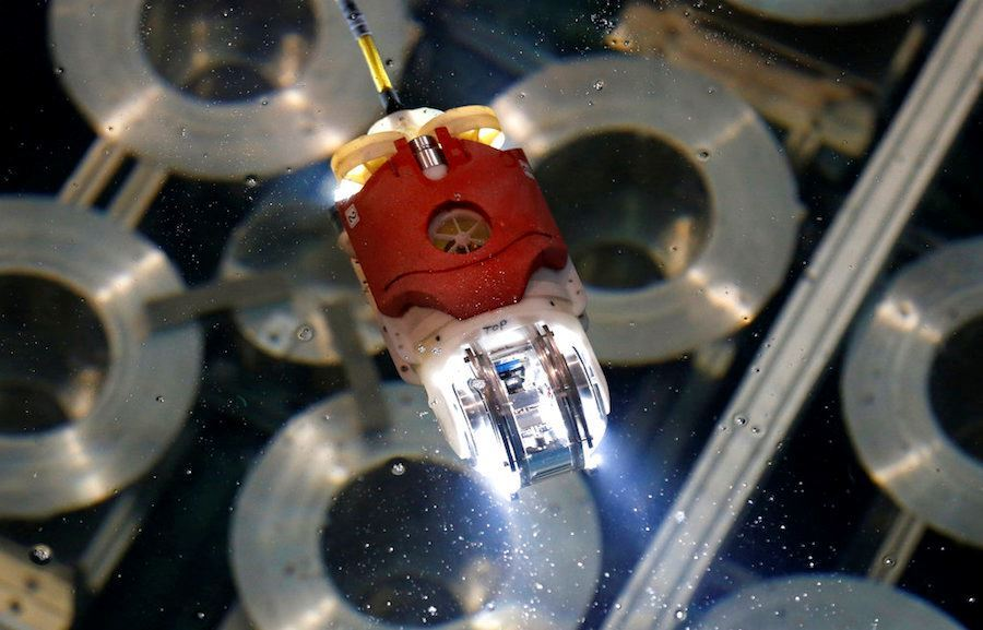 Picture of Swimming robot probes Fukushima reactor to find melted fuel