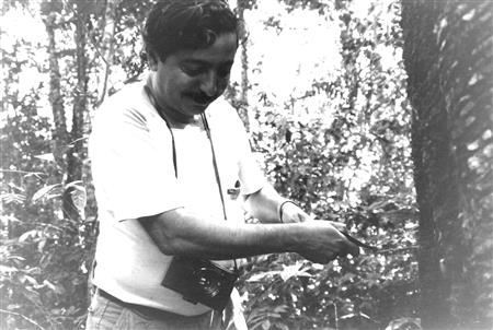 Chico Mendes working with a rubber tree (Wikipedia Commons (Miranda Smith, Miranda Productions, Inc.