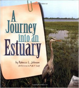 Picture of A Journey into an Estuary