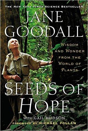 Jane Goodall My Hero