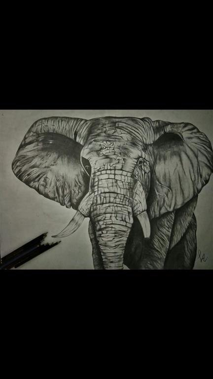 Picture of An elephant, 2017 by Payal Aggarwal from India