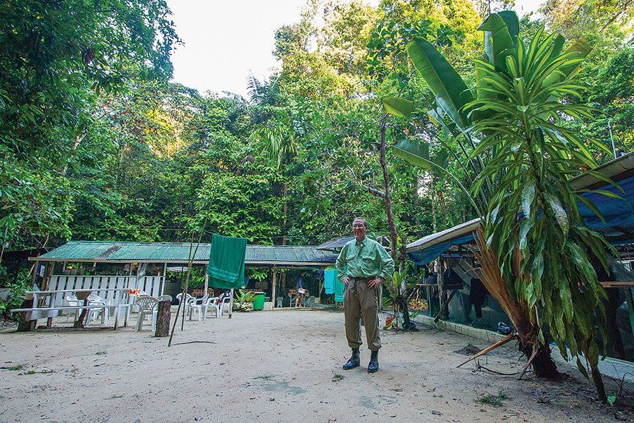 Picture of Camp Amazon: Inside the 'lungs of the Earth'