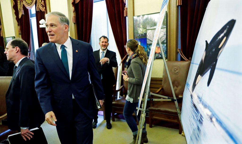 Picture of Washington governor proposes major steps for orca recovery