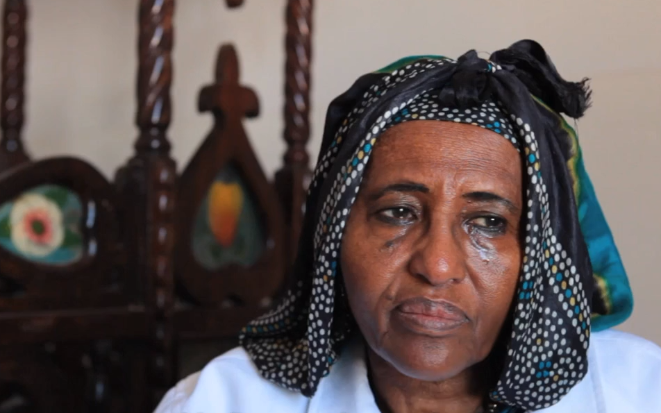 Picture of Dr. Hawa Abdi - The Mother of Hope Village