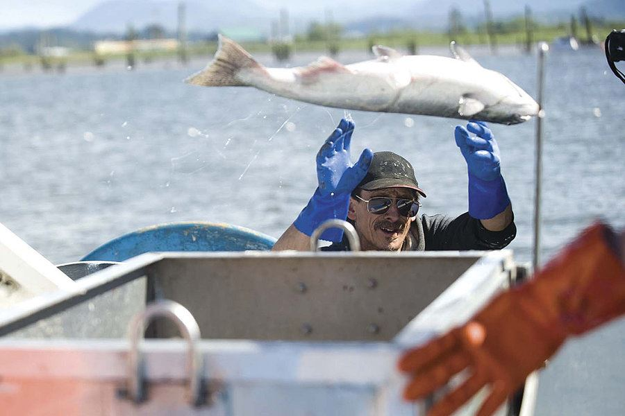 Picture of For Northwest fishermen, latest catch is trade-war trouble
