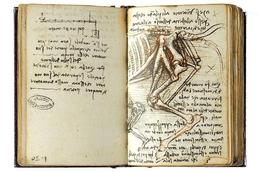 Picture of Honoring Leonardo da Vinci, the master who never stopped experimenting