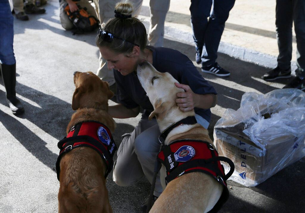 Picture of 'Only animals can live here': Storm victims await evacuation