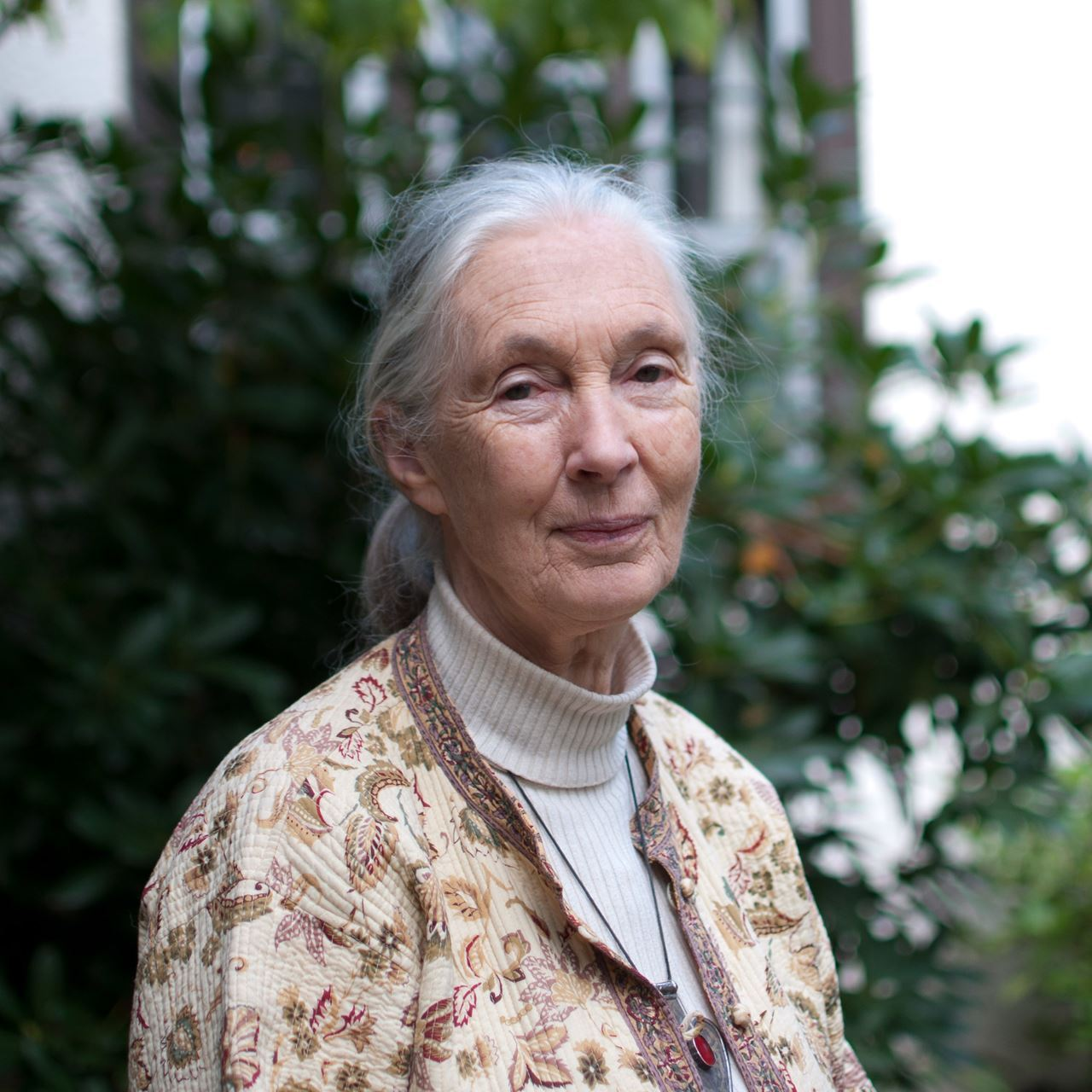 Picture of Jane Goodall