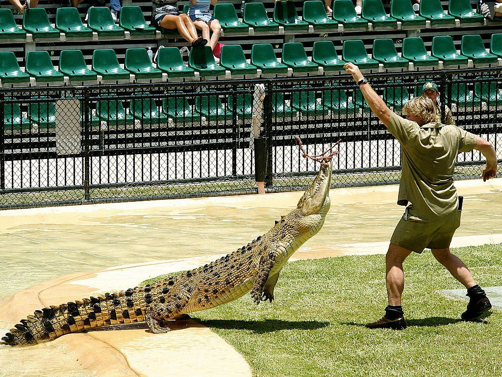 Picture of Steve Irwin
