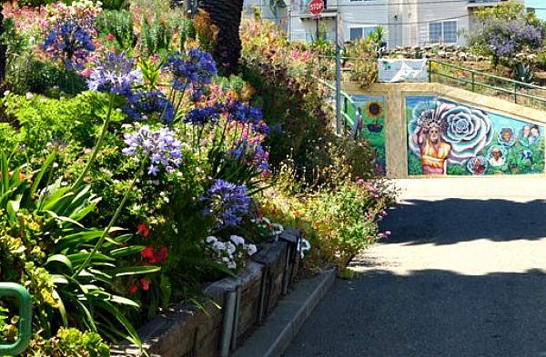 Flowers bloom alongside Quesada Avenue in San Francisco. An effort by local citizens to plant gardens, called the Quesada Gardens Initiative, profoundly altered the face of this once-blighted neighborhood.  <P>Courtesy of Katherine Gustafson