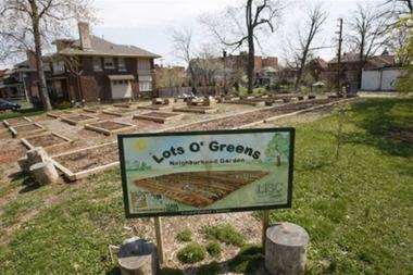 This is the Lots O' Greens neighborhood garden in Detroit, The city, which revolutionized manufacturing with its auto assembly lines, could once again be a model for the world as residents transform vacant, often-blighted land into a source of fresh food.
