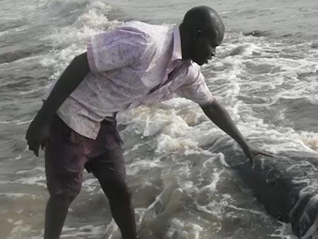 Karim Sall from Senegal in <i>Mr. Whale</i>