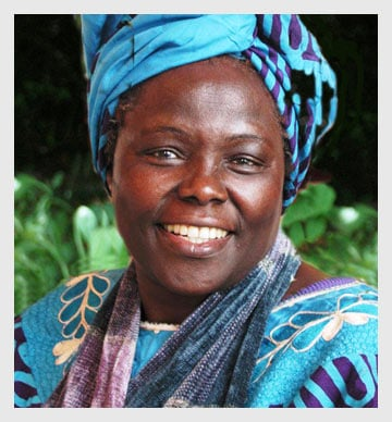 10 Brilliant Quotes From African Authors