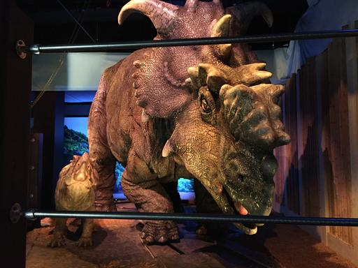 "This Wednesday, Nov. 23, 2016 photo, shows a pair of pachyrhinosaurus that move around as part of the ""Jurassic World"" exhibit opening Friday, Nov. 25, at the Franklin Institute in Philadelphia. (AP Photo/Josh Cornfield)"