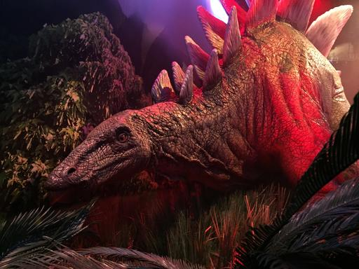 "This Wednesday, Nov. 23, 2016 photo, shows an animatronic stegosaurus on display at the ""Jurassic World"" exhibit opening Friday, Nov. 25, at the Franklin Institute in Philadelphia. (AP Photo/Josh Cornfield)"