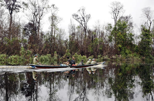 In this Friday, Jan. 8, 2016 photo, a boat sails on a river at a peat land forest recently burned in a wildfire in Sungai Mangkutub, Central Kalimantan, Indonesia. Indonesia has strengthened its moratorium on converting peat swamps to plantations in a move a conservation research group says would prevent annual fires and substantially cut the country's carbon emissions if properly implemented. (AP Photo/Dita Alangkara)