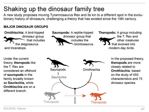 Graphic shows reworking of dinosaur family tree based on new theory; 3c x 4 inches; 146 mm x 101 mm;