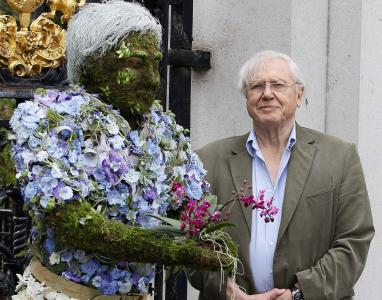 Photo of Sir David Attenborough from the BBC's epic nature series