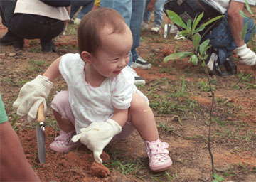 Child Planting a Tree (foe.org.hk)