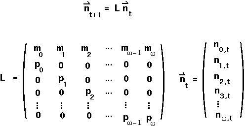 Leslie Matrix (zoology.ubc.ca)