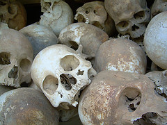 The Killing Fields (http://www.lehigh.edu/~ineng/wek/wek-history.htm)
