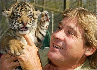 Steve Irwin holding a baby tiger (news.bbc.co.uk)