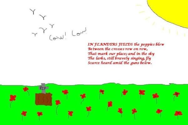 Flander's Field's