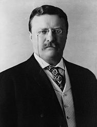 This is a picture of Teddy while he was in office (wikipedia.org)