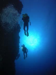 Scuba divers<br>Photo courtesy of Jim Dean