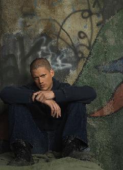 Micheal Scofield (http://l.yimg.com/img.tv.yahoo.com/tv/us/img/site/26/92/0000042692_20070910120836.jpg)