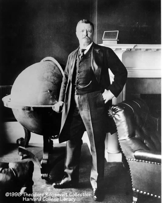 White House Roosevelt  (www.theodoreroosevelt.org)