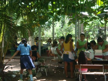 Parent fundraising picnic featuring grown hydroponic vegetables and tilapia